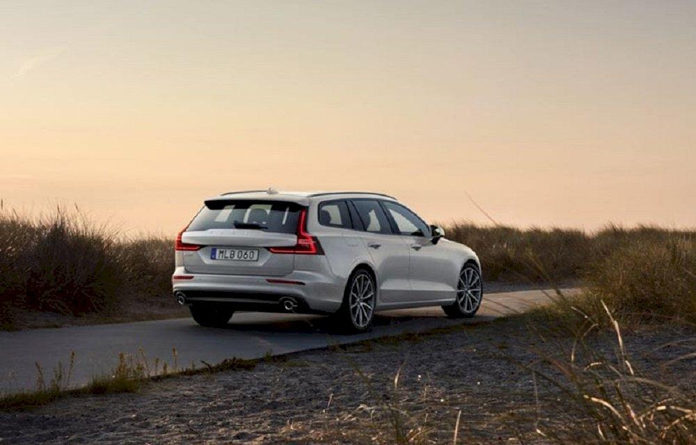 Grauer Volvo in der Natur.
